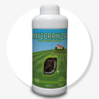 Mycirrhiza-1-ltr-bio-fertilizer.jpg