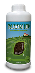Bloom-up.png
