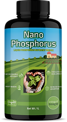 nano phosphorus.png