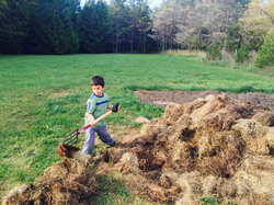 Composted Hay