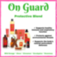 On Guard Products.png