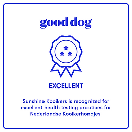 good dog health badge excellent.png