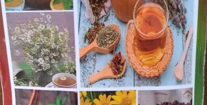 Hierbas y Flores para Té