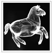 toy-horse-photogram-framed.jpg