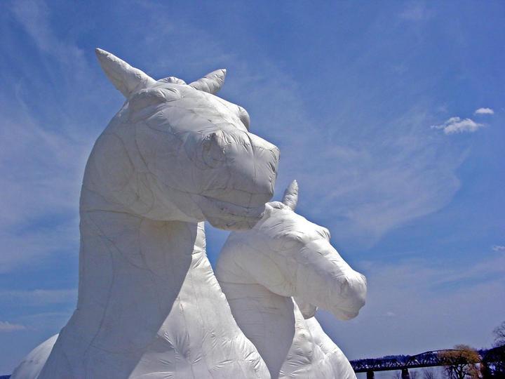 Horses, 2003.