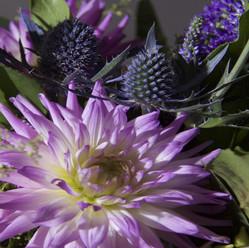 Flowerbird Flowers
