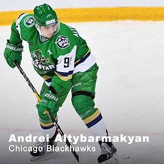 Andrei Altybarmakyan.jpg