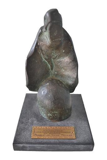 Prêmio Jabuti - História da Engenharia