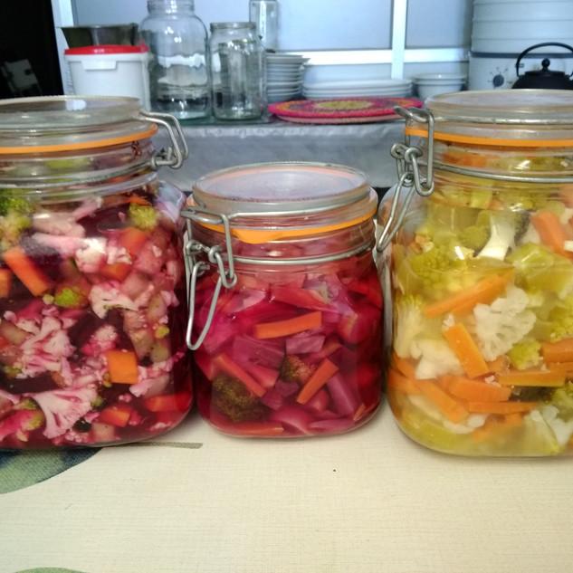 Taller de fermentats vegetals