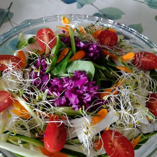 Amanida amb macerats i germinats