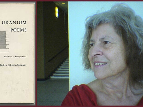 "Judith Johnson: A video interview and a new poem for our ""plague year"""