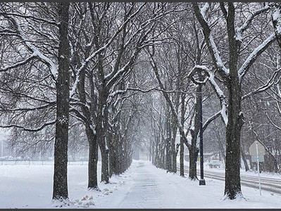 What poem comes to mind on this cold winter's day?