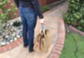 Handy_MZ_bags.jpg