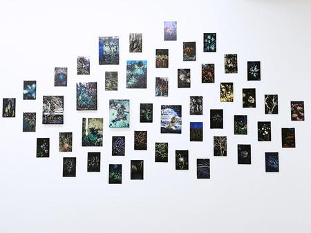 visuel expo yannick bernede 01.jpg
