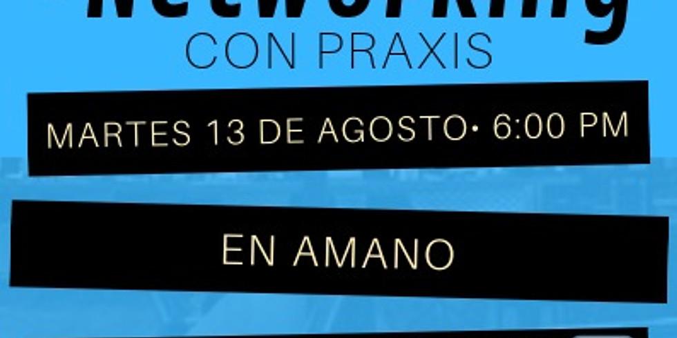 +Networking con Praxis en Amano