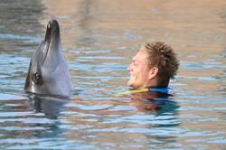Dolphin Bay (2)