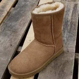 UGG® Women's Classic Short II Boot Chesnut