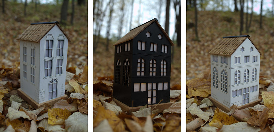 Miniature Houses 3.jpg