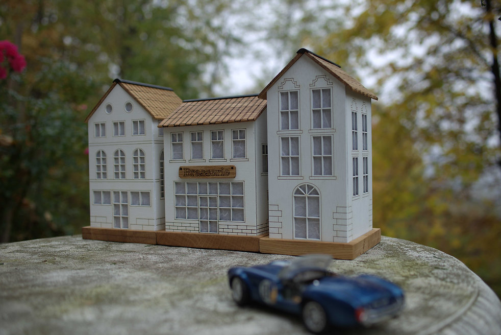 Miniature Houses 1.jpg