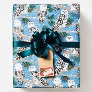 Snowy Owls gift wrap