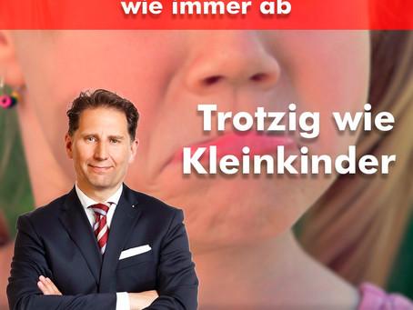 Trotzig wie Kleinkinder: CDU, SPD, Grüne und Linkspartei lehnen AfD-Vizepräsidenten ab