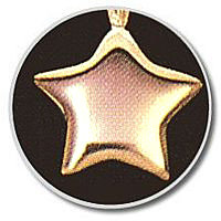 Small Gold Vermeil Star Pendant