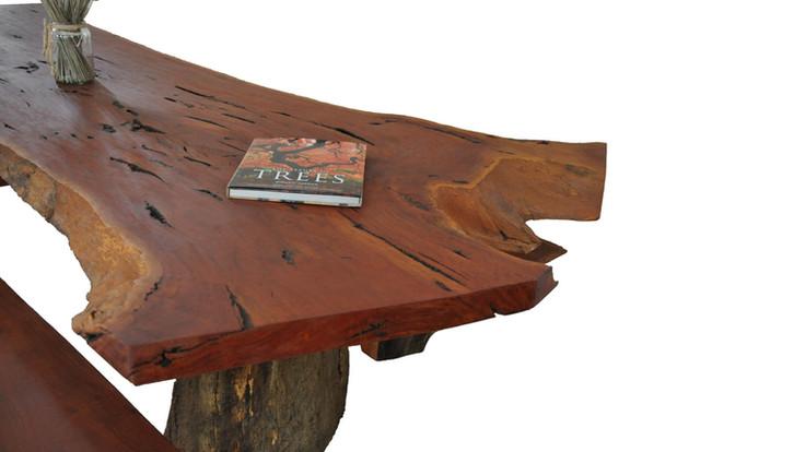 Large table zoom.jpg