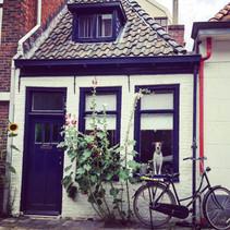 Era uma vez uma casa no estilo Holandês...