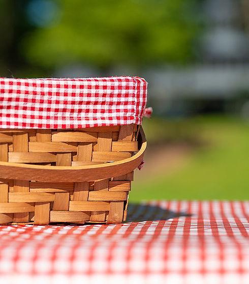 Picnic-Basket-Checkered-vert.jpg