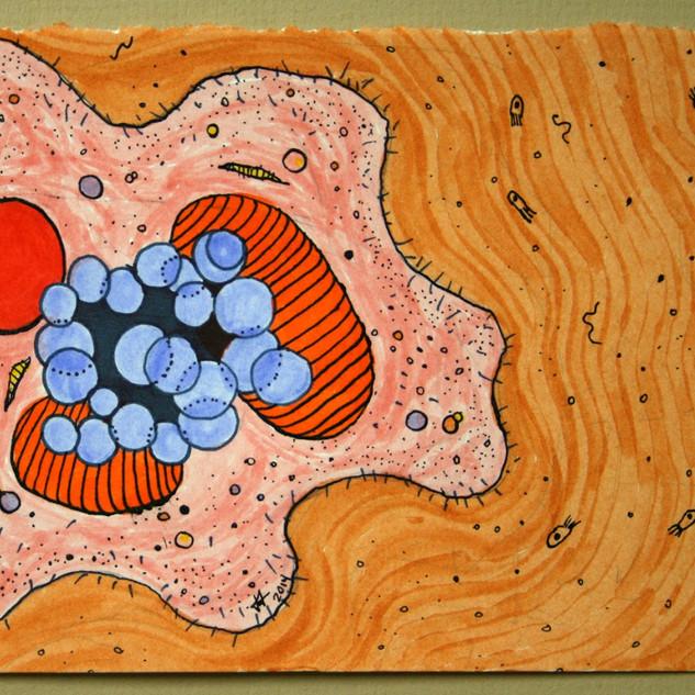 Ameba with orange background