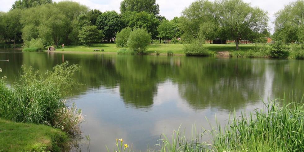 Bolton Brick Ponds - Landscape Photography