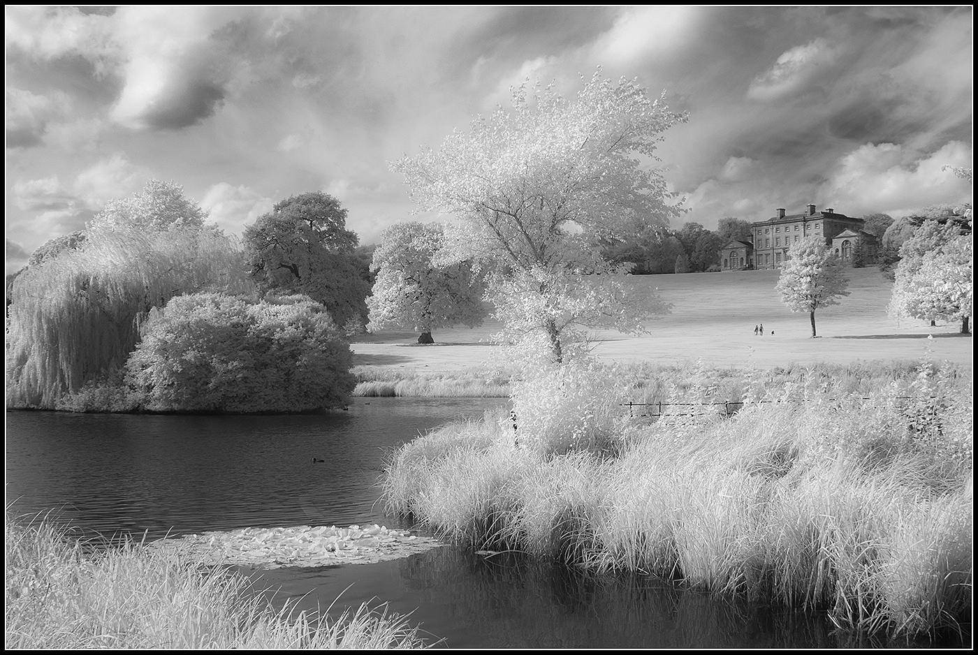 Cusworth from the lake 1