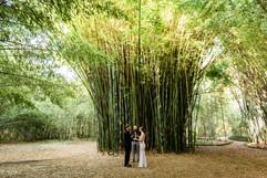 Elopement at Kanapaha Botanical Gardens