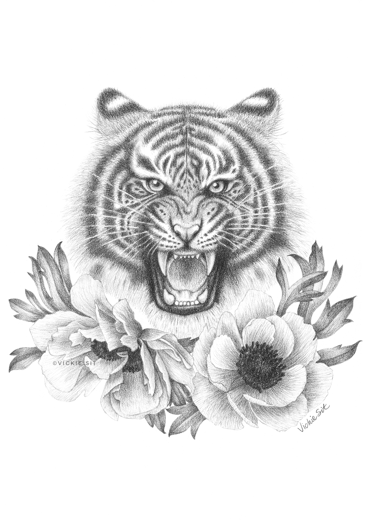 Tiger and Anemones