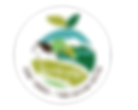 web רקע עיגול לבן.png