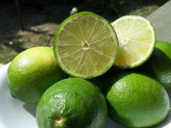 לימון הליים