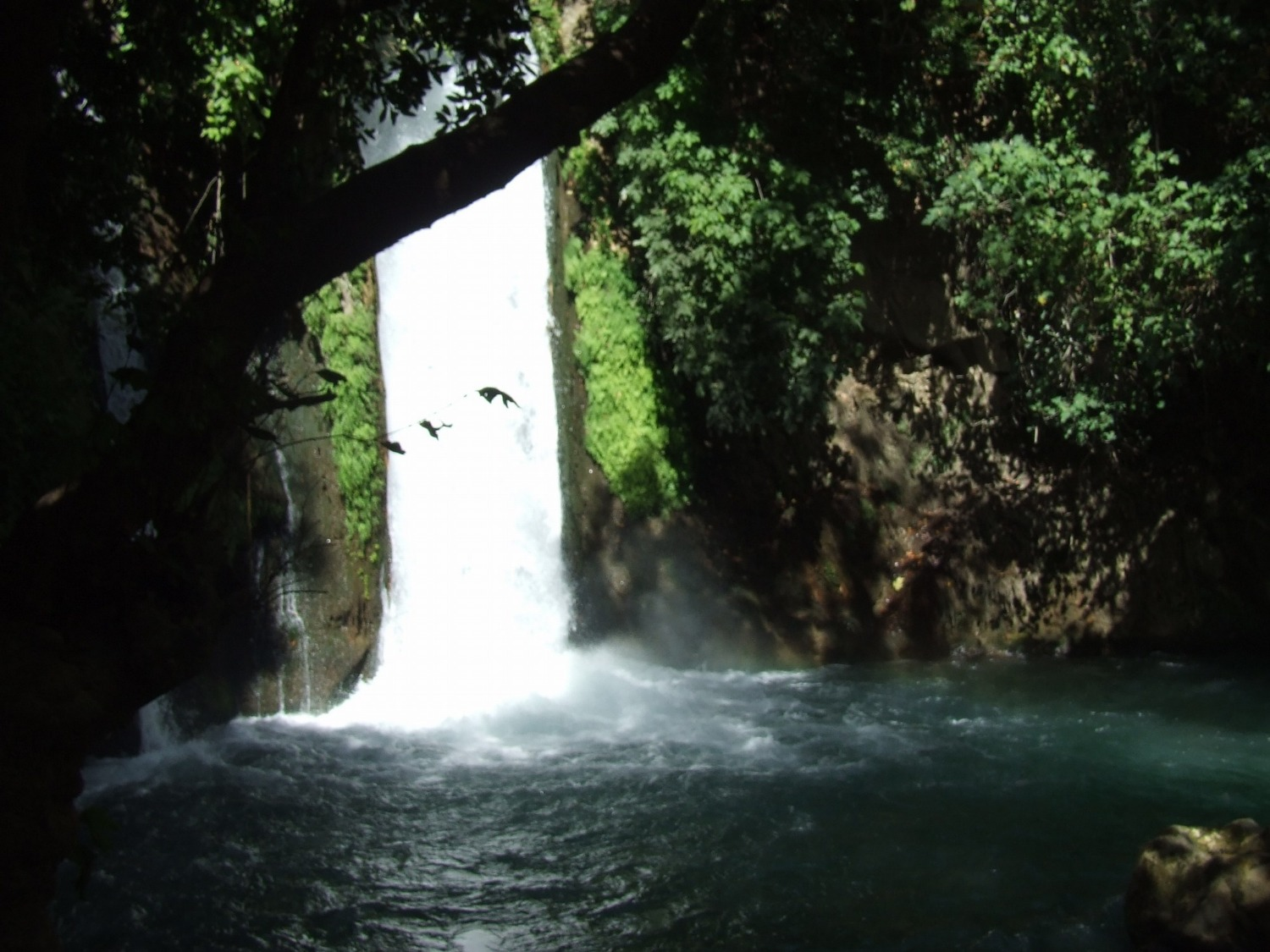 The Banias waterfall
