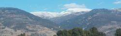 Mount hermon view
