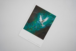Post Card - The Dove Come Holy Spirit