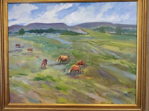 Grazing Cattle (Boyd Osborne)