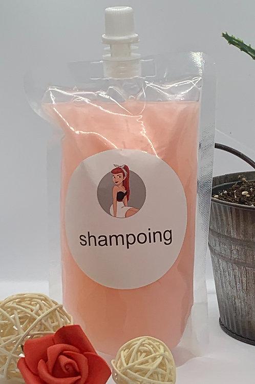 Shampoing  Pomegranate de Salem