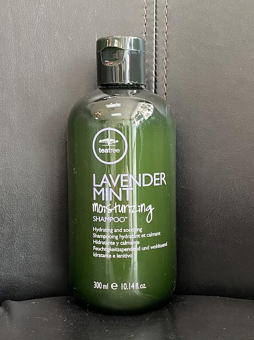 TeaTree Lavender Mint Shampoo