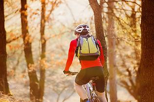 bike tour in verona