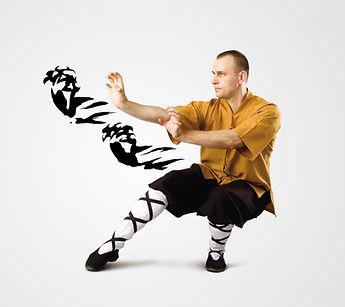 Shaolin_identity_presa-10_edited.jpg