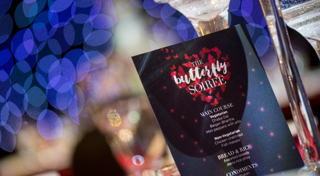 The Butterfly Soiree