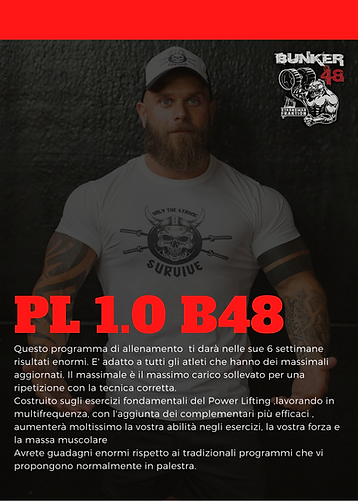 PL 1.png