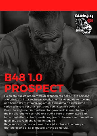B48 1.0 Prospect (1).png