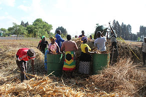 Compost making diverse FforF Hre 17.jpg