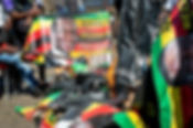 Protest action Mnangagwa pic flags burnt