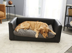 sofa-bed.jpg